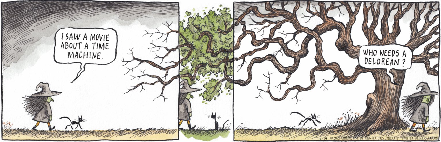 Cartoon of a pretty witch desipising Deloreans as time machines, when she knows trees are the real ones
